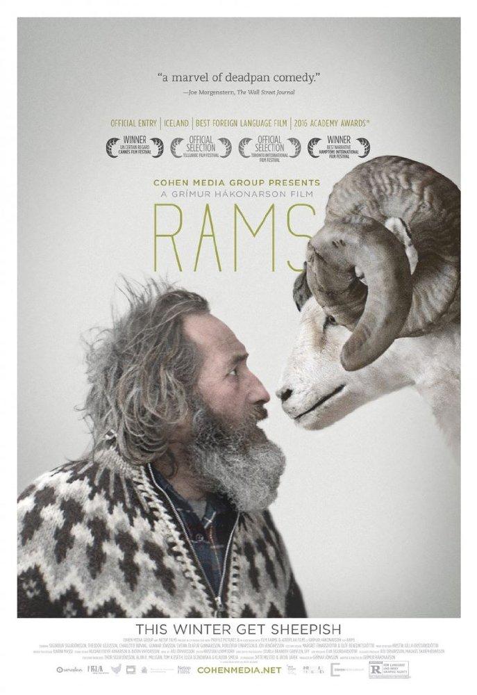 Rams (2015) aka Hrutar - cronică de F.F.