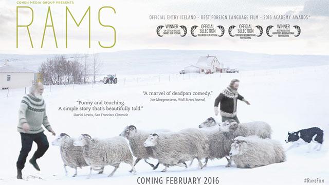 Rams (aka. Hrútar) (2015)